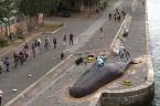 Scoop... une baleine échouée en plein Paris