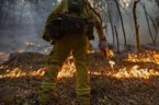 Firefighters Making Progress in California Wildfires