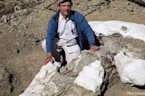 Most Complete Tyrannosaur Fossil Ever Found in Southwestern US