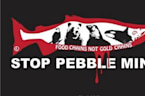 Past GOP Administration EPA Leaders Slam Proposed Pebble Mine in Alaska