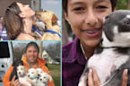 5 Rescue Shelters That Are Finding Dogs Love And FURever Homes