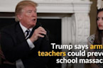 Trump suggests arming teachers to stop mass school shootings