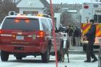Vehicle strikes White House barrier, driver apprehended