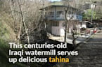 Made in centuries-old watermill, tahina dip still a hit in Iraq