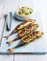 Mackerel with Citrus Fennel Salad