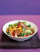 Duck & Vegetable Noodles