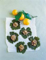 Lemon Vine Leaves