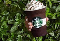 Starbucks Drinks for Summer with Less than 100 Calories
