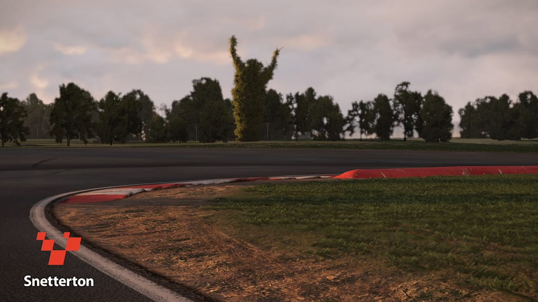 snetterton bushes project cars game