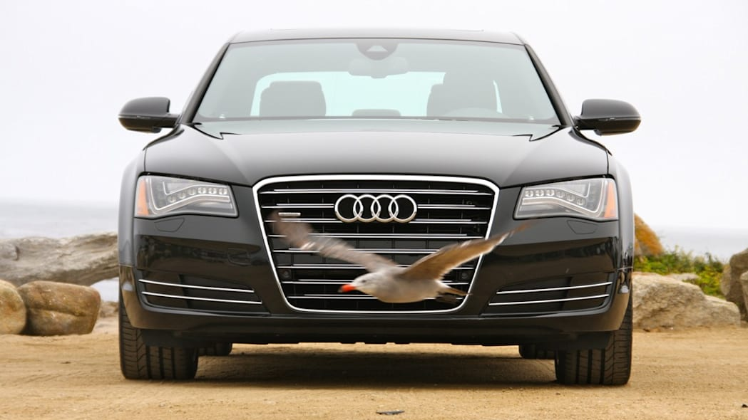 2011 Audi A8 front view (with bird)