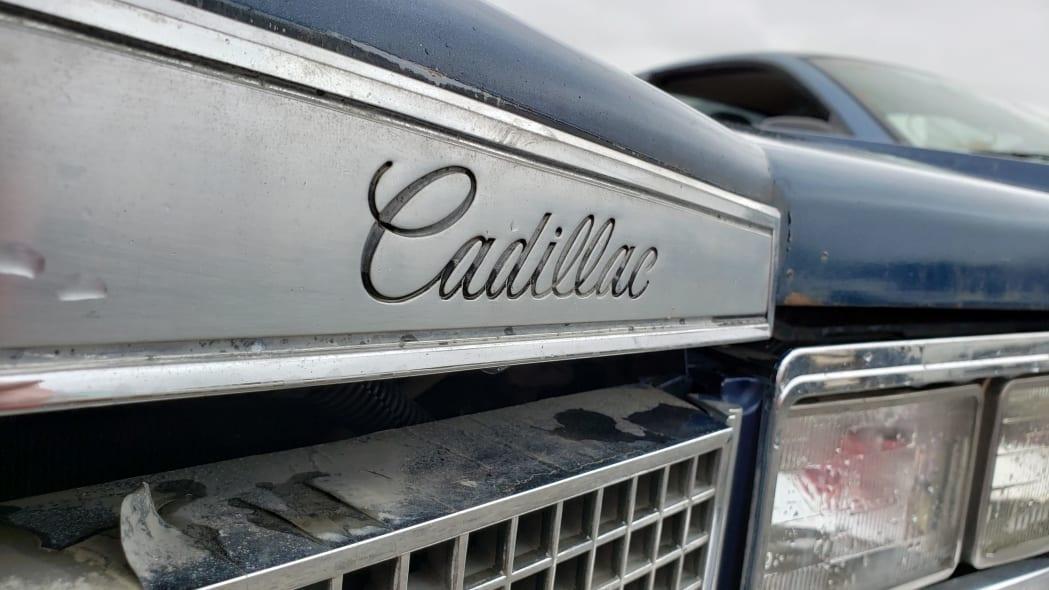26 - 1981 Cadillac Eldorado in California wrecking yard - photo by Murilee Martin