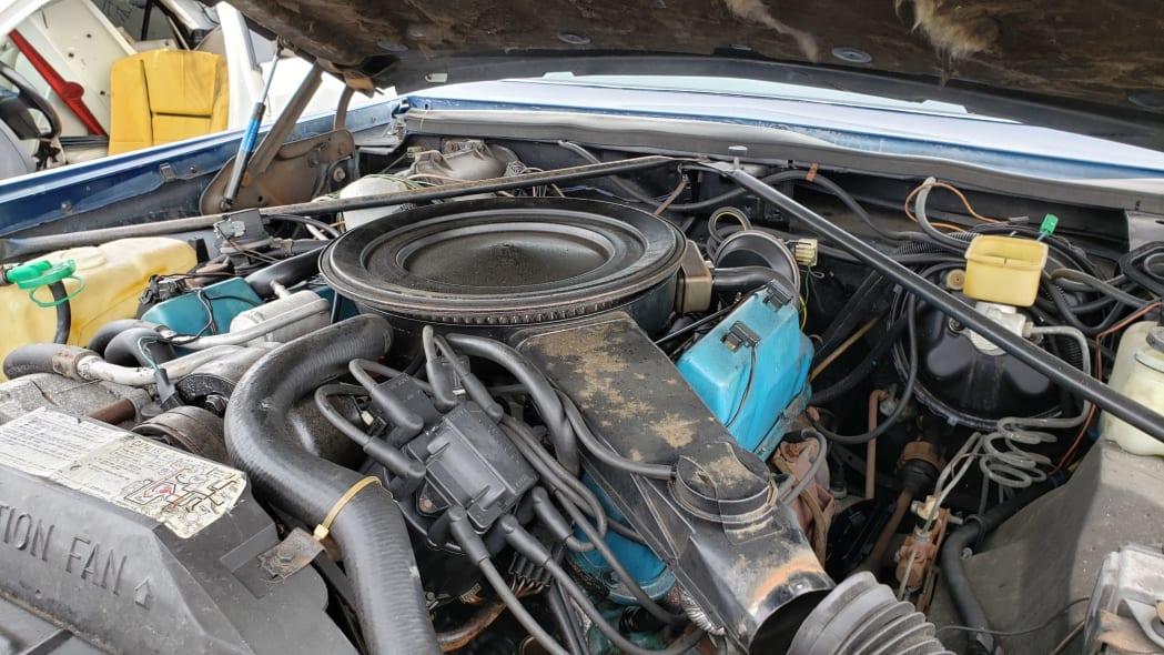 33 - 1981 Cadillac Eldorado in California wrecking yard - photo by Murilee Martin
