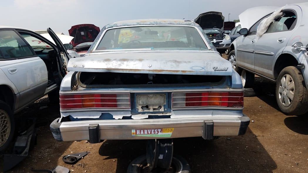 30 - 1980 AMC Concord in Colorado wrecking yard - photo by Murilee Martin