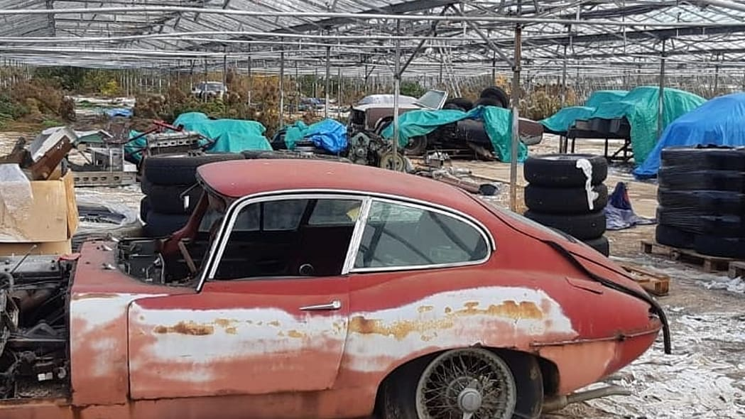 30 Vintage Jaguars in a Greenhouse