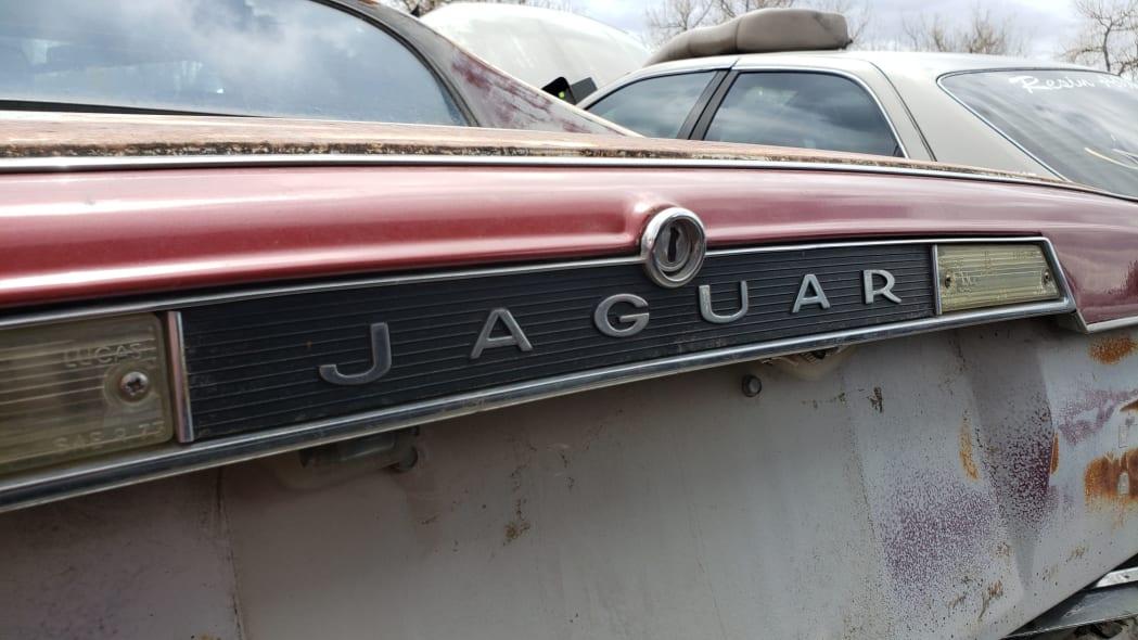 25 - 1984 Jaguar XJ-S in Colorado Junkyard - photo by Murilee Martin