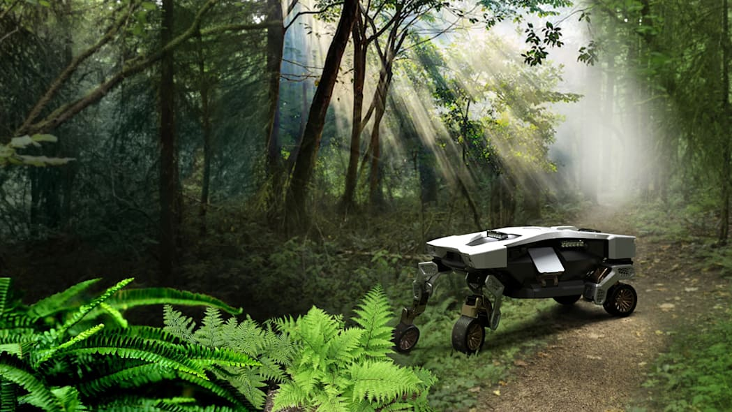 TIGER concept in forest