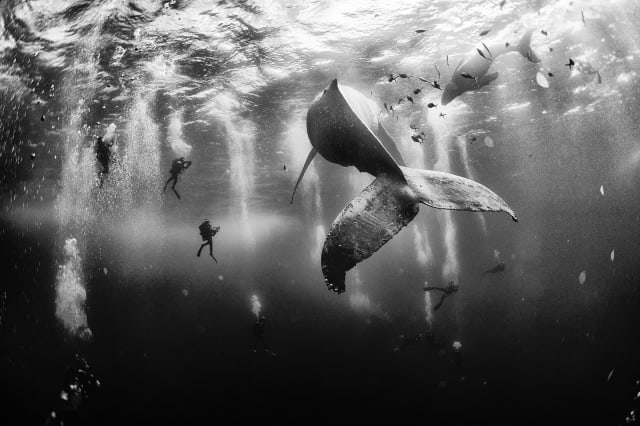 National Geographic Traveller Photo Contest 2015 winners