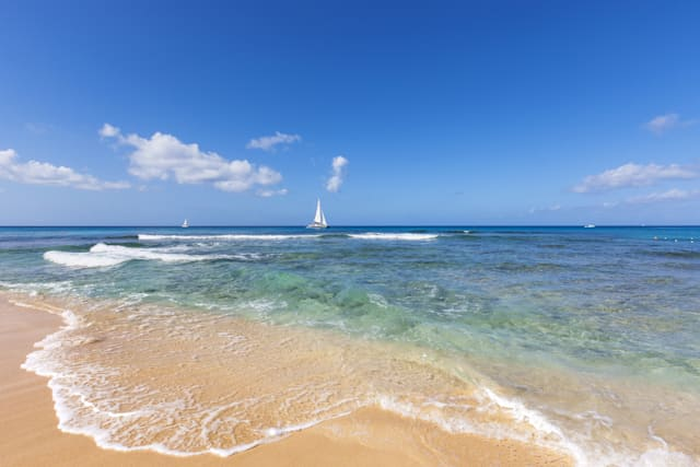 Celebrity Christmas and New Year holiday destinations