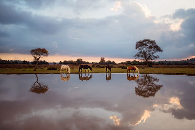 National Geographic Traveller (UK) Photography Competition 2017 finalists