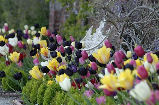 National Trust's ten signs of Spring