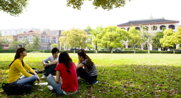 Four college students studying on the lawn in the campus, Studying, Education
