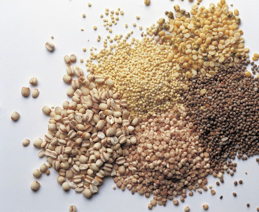 Grains contain all important soluable fibres that are tied to a healthy