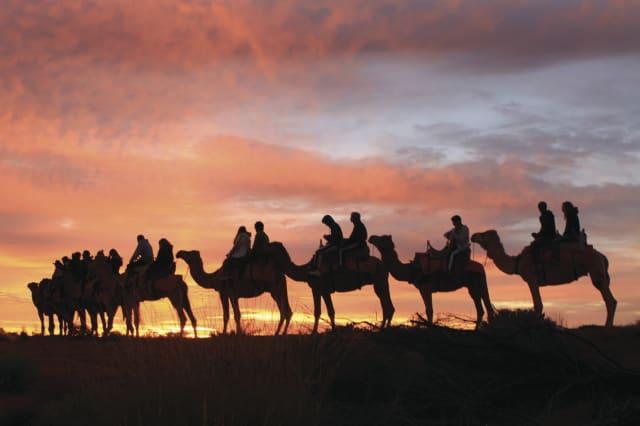 Camel riding in Australia