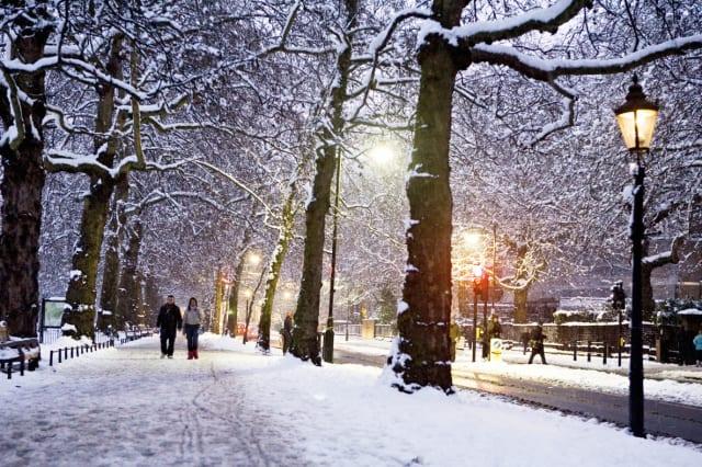 Snow In Birdcage Walk