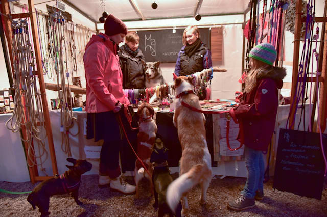 Christmas market for dogs in Berlin