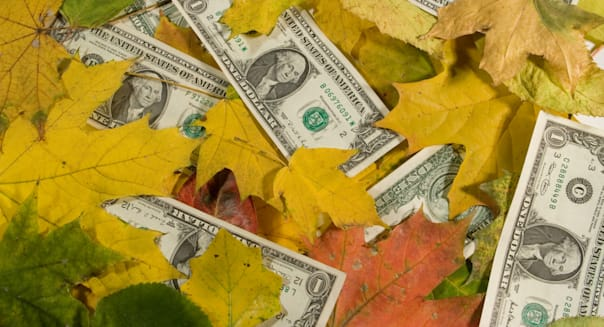 US dollars covered with autumn leaves