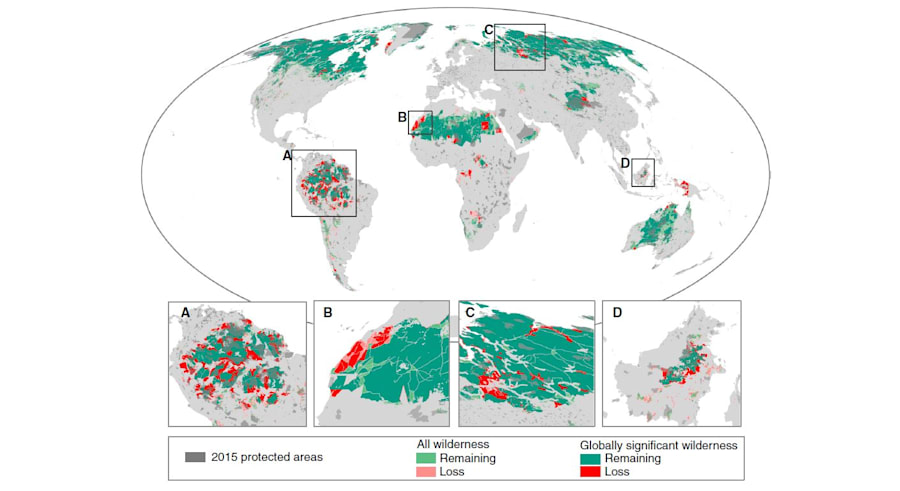 One tenth of the world's wilderness areas are no longer considered 'wilderness' -- shown in