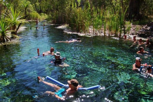 Mataranka Hot Springs