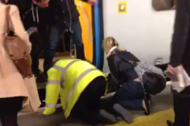 Dog rescued after falling on tracks at Elephant and Castle station