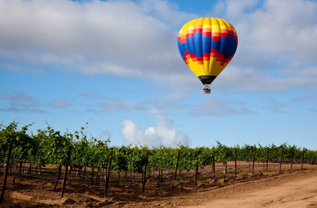 BJ1B7T Hot air balloon floating over grape vineyard