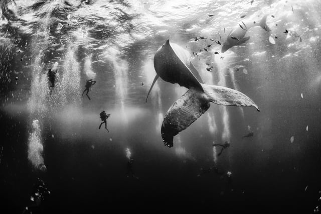 National Geographic Traveller Photo Contest 2015 winner