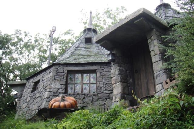 Wizarding World of Harry Potter - Hagrid's hut