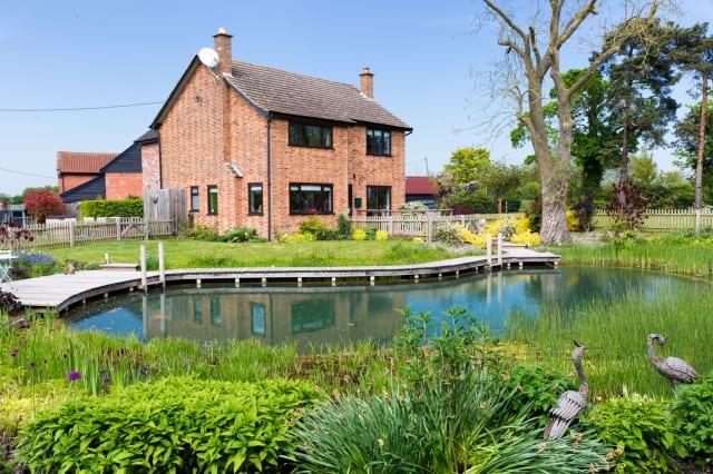 The natural pool