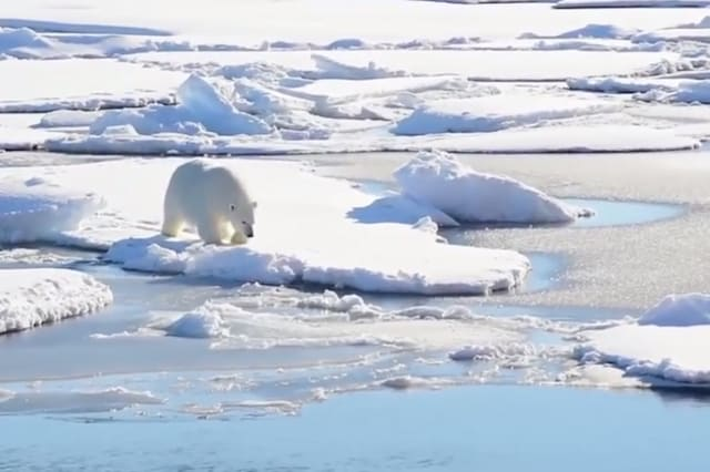 Russian scientists trapped by polar bears stuck in Arctic