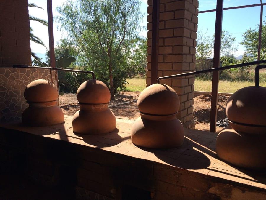 Después de la etapa de fermentación viene la destilación, en la que se convierte el mosto fermentado...
