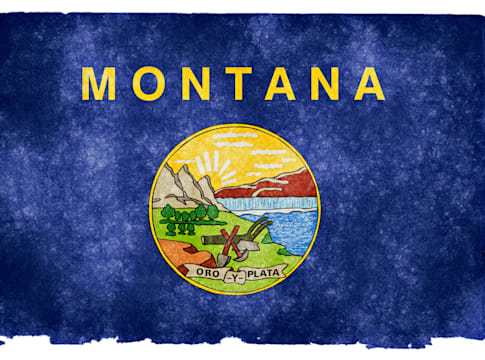 Montana Grunge Flag