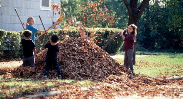 Children raking autumn leaves