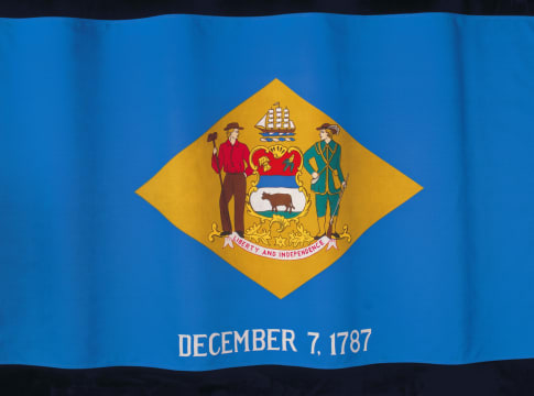 the flag of the state of Delaware