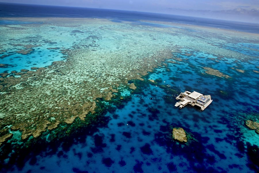 The Great Barrier Reef ,experienced the worst coral bleaching event in history last