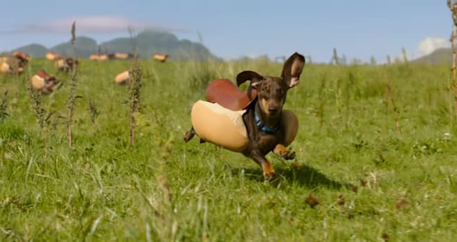 heinz, heinz ketchup, super bowl, super bowl commercial, super bowl ad, dachshunds, weiner dogs