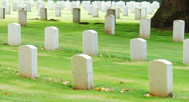 tombstones in a veterans park...