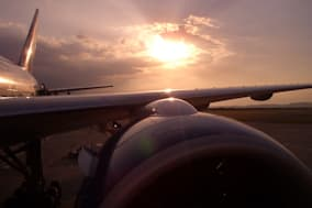 sunbeams on the wing. sun over...