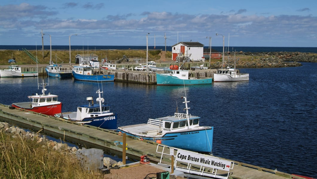 harbour of Pleasant Bay, Cape Breton Island