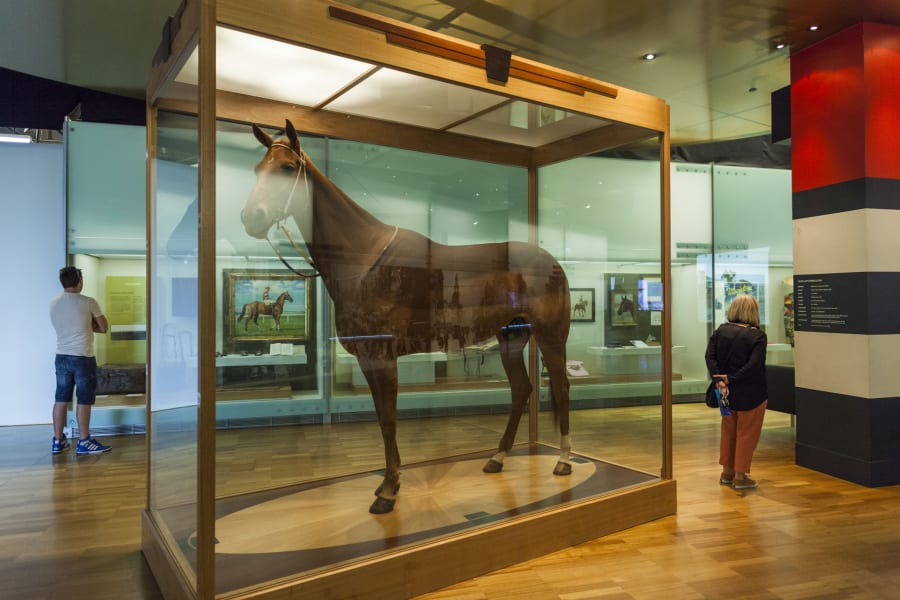 Phar Lap lives inside a hermetically sealed