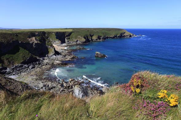 Fishermans Cove North Cliffs Cornwall