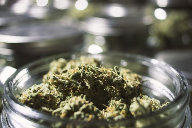 New Survey Says Marijuana Users Have Higher Incomes And Are More